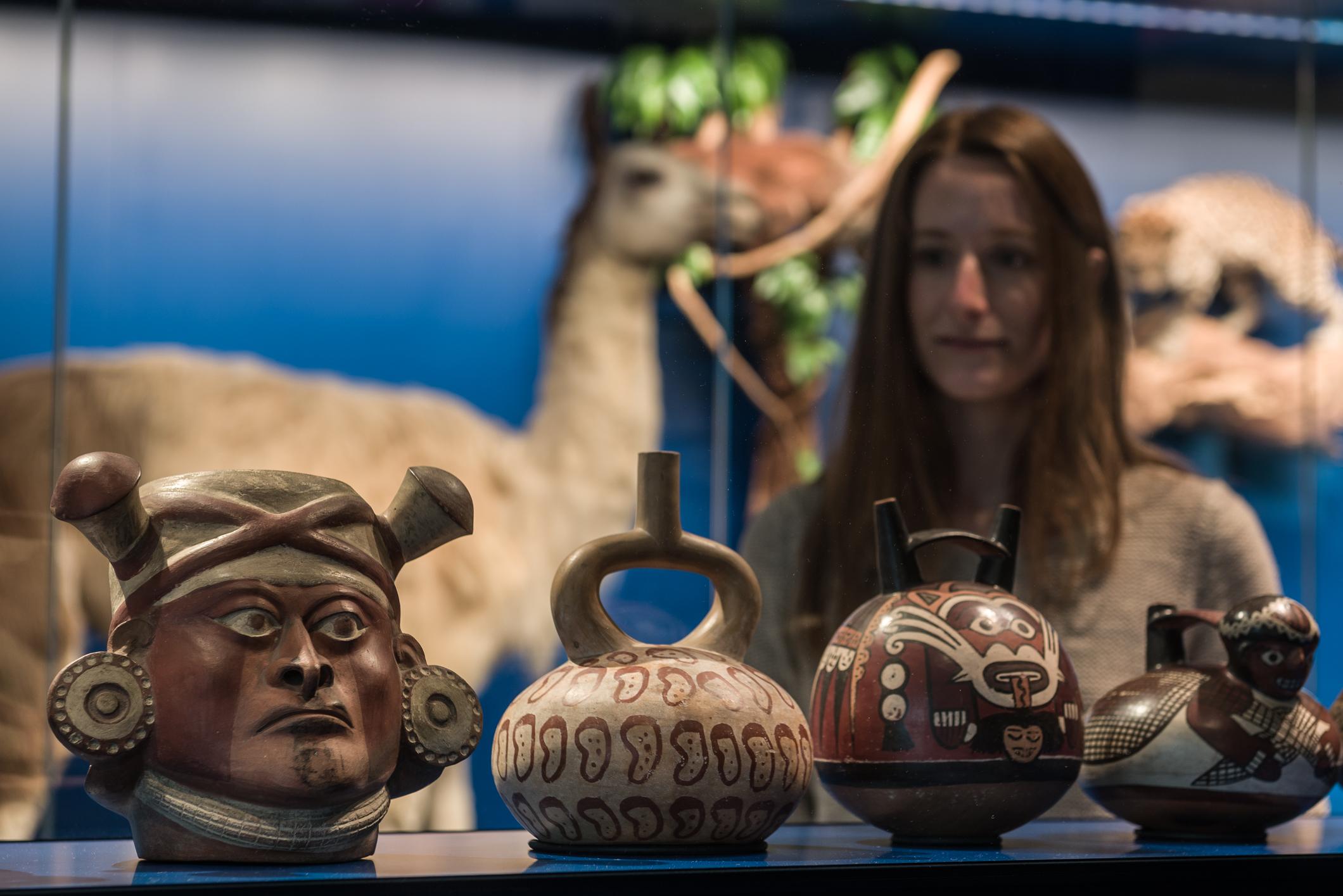 Eine Person betrachtet Ausstellungsstücke im Überseemuseum.